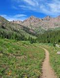 Caminhando em Rocky Mountains, Colorado Fotografia de Stock Royalty Free