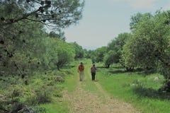 Caminhando a estrada com caminhantes foto de stock