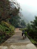 Caminhando a montanha com cavalo Imagens de Stock