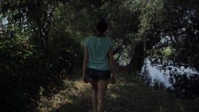 Caminhando a mulher que trekking na selva da floresta úmida Eleve a opinião traseira o caminhante fêmea novo que anda no passeio  vídeos de arquivo
