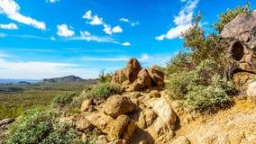 Caminhando na fuga da caverna do vento da montanha de Usery cercada por grandes pedregulhos, por Saguaro e por outros cactos Fotografia de Stock