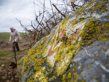 Caminhando na fuga de Lahnwanderweg perto de Runkel, Hessen, Alemanha Imagens de Stock Royalty Free