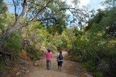 Caminhando no arbusto, Queensland, Austrália foto de stock