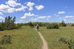 Caminhando no o ermo Ridge Fotos de Stock Royalty Free