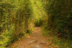 Caminhando no ordesa de torla, pyrenees de huesca imagens de stock