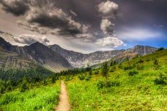 Caminhando o lagópode dos Alpes Cirque Imagens de Stock