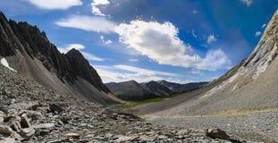 Caminhando o lagópode dos Alpes Cirque Foto de Stock