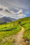 Caminhando o lagópode dos Alpes Cirque Fotos de Stock Royalty Free