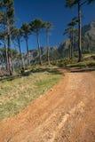 Caminhando o trajeto Imagem de Stock Royalty Free