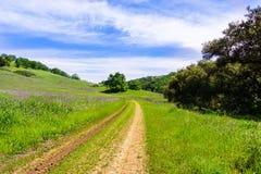Caminhando o trajeto nos montes do Rancho recentemente aberto San Vicente Open Space Preserve, parte do parque do condado de Cale imagem de stock
