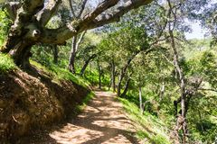 Caminhando o trajeto nos montes do Rancho recentemente aberto San Vicente Open Space Preserve, parte do parque do condado de Cale imagens de stock
