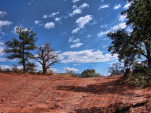 Caminhando a paisagem Foto de Stock Royalty Free