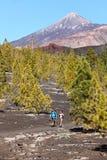 Caminhando a paisagem Teide, Tenerife Fotografia de Stock Royalty Free