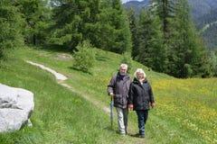 Caminhando pares Imagens de Stock Royalty Free