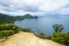 Caminhando a passagem litoral de Coromandel, Nova Zelândia 8 imagens de stock