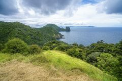 Caminhando a passagem litoral de Coromandel, Nova Zelândia 23 imagem de stock