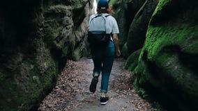 Caminhando trekking nas montanhas Ideia traseira da parte traseira de uma mulher nova do hóquei que anda ao longo do caminho com  video estoque