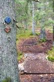 Caminhando a trilha assina em uma árvore na floresta Fotografia de Stock