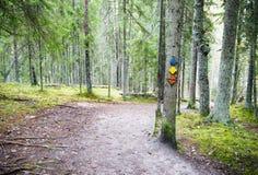 Caminhando a trilha assina em uma árvore na floresta Imagem de Stock