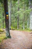 Caminhando a trilha assina em uma árvore na floresta Fotografia de Stock Royalty Free