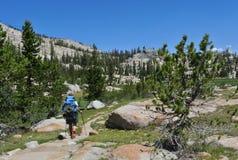 Caminhando Yosemite Imagens de Stock Royalty Free