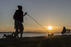 Caminhante canino mostrado em silhueta beira-mar Fotografia de Stock
