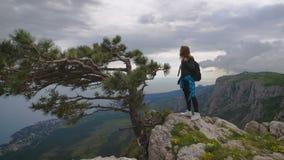 Caminhante com a trouxa que está sobre a montanha e que aprecia a opinião do vale filme