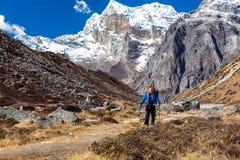 Caminhante da montanha que anda no passeio com picos altos no fundo Fotos de Stock