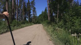 Caminhante da mulher com trouxa e polos do nordic que andam afastado na estrada de floresta filme