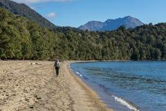 Caminhante da mulher que anda ao longo da costa do lago Te Anau Foto de Stock Royalty Free