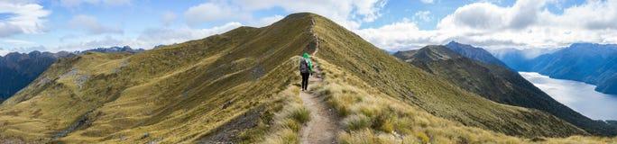 Caminhante da mulher que anda em uma seção alpina da trilha de Kepler Imagem de Stock