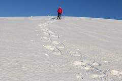 Caminhante da mulher que caminha com sapatos de neve imagens de stock royalty free