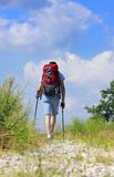 Caminhante de passeio no trajeto rochoso Fotos de Stock Royalty Free