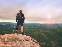 Caminhante do homem que veste a cinta e o gainst de suporte do pé os cruthes Forest Park natural imagem de stock royalty free