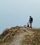 Caminhante e companheiro fiel Imagem de Stock Royalty Free