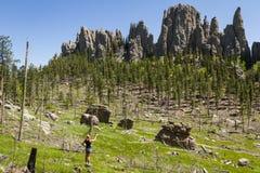 Caminhante em Custer State Park, South Dakota imagens de stock