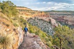 Caminhante em uma fuga íngreme no monumento nacional de Colorado Imagens de Stock