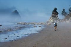 Caminhante em uma praia nevoenta Fotografia de Stock Royalty Free