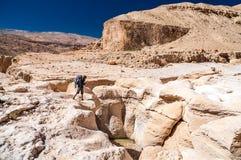 Caminhante em Wadi Hasa Fotos de Stock Royalty Free