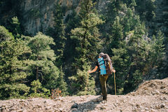 Caminhante masculino desportivo que trekking com a trouxa na floresta Imagem de Stock