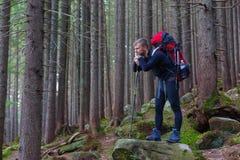 Caminhante masculino pensativo que fica na pedra na floresta Fotos de Stock