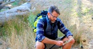 Caminhante masculino que guarda o mapa e o equipamento do sentido na floresta 4k video estoque