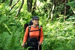 Caminhante na floresta selvagem Fotos de Stock Royalty Free