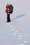 Caminhante na neve Foto de Stock Royalty Free