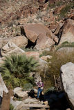 Caminhante na ravina rochosa Fotografia de Stock