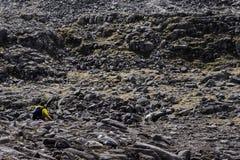 Caminhante no amarelo que atravessa um campo da rocha em montanhas escocesas Foto de Stock