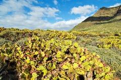 Caminhante no vulcão Imagens de Stock Royalty Free
