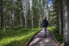 Caminhante novo no revestimento Lapland Fotografia de Stock Royalty Free