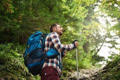 Caminhante que admira a vista ao andar acima de uma fuga da floresta imagens de stock royalty free