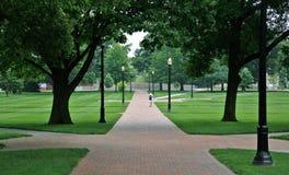 Caminhante solitário em um passeio do tijolo Fotos de Stock Royalty Free